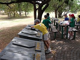 recycling bins in tea garden 6_3(1)