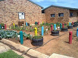 school garden_3